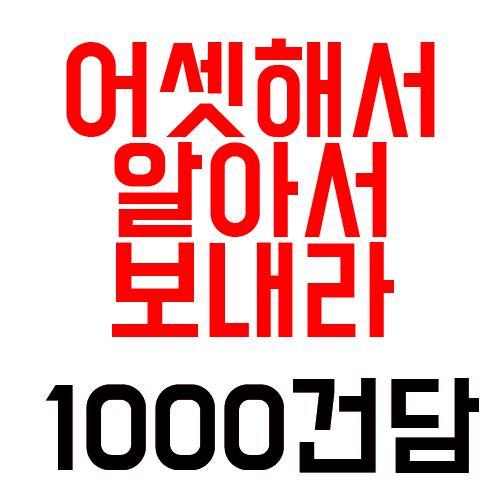 1000프라모델/랜덤